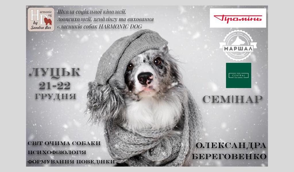 Семінар «Світ очима собаки»