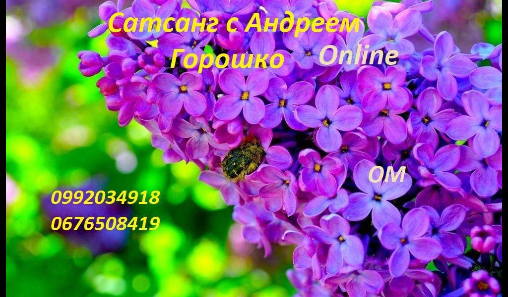 Сатсанг с Андреем Горошко, Онлайн 11.07.2020