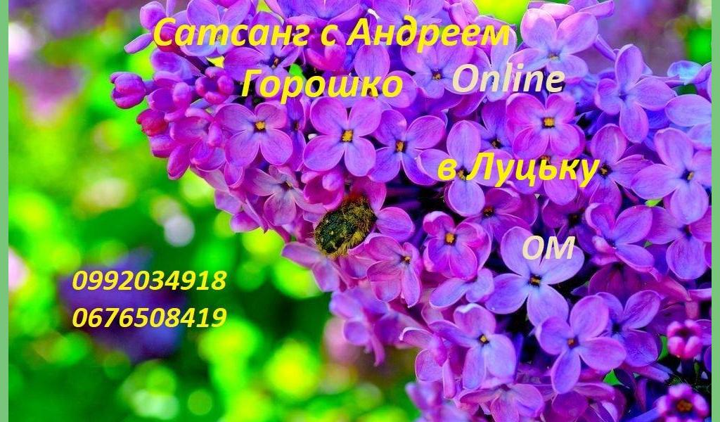 Сатсанг с Андреем Горошко, Онлайн