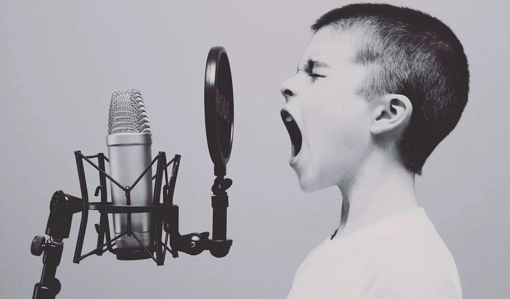 Робота з голосом: Основи ораторської майстерності online